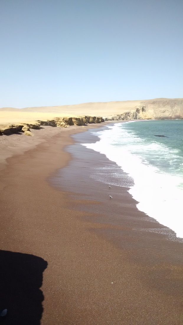 Paracas-ReserveRedBeach.jpg